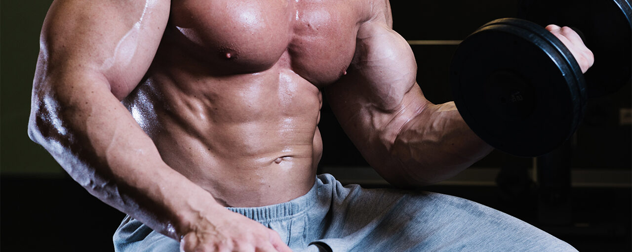 The Muscle Pump