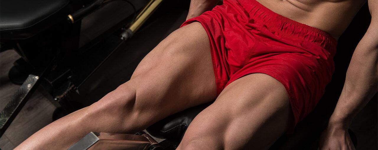 leg workout quadriceps focus