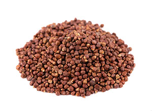 Grains of Paradise Seed